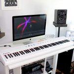 Alesis Recital White – Piano Numérique pour Débutant avec 88 Touches Semi-Lestées de Taille Authentique, Adaptateur Secteur, Enceintes Intégrées et 5 Voix Prémium (Exclusivement sur Amazon)