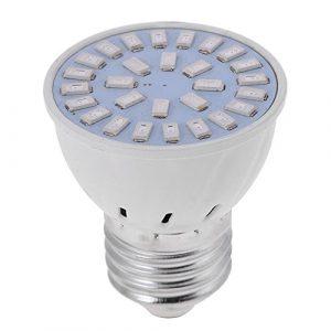 Matefield Ampoule de Croissance LED E27 5733 SMD Rouge + Bleu 220 V