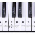 Autocollant PVC étiquette note Biginners Music Stave Piano Clavier amovible 54/61 touches Noir Noir