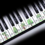 ColorfulLaVie Autocollants pour Clavier de Piano Autocollants de Dessin Animé Clavier Amovible 37/49/54/61/88 Touche Piano Autocollant Convient aux Débutants