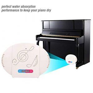 Déshumidificateur de piano Déshumidificateur électronique Déshumidificateur d'humidité de piano Silencieux Muet Mini Déshumidification domestique pour Piano Armoire Salles de bains