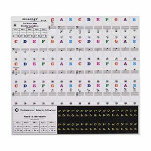Fesjoy Autocollants pianos 37/49/54/61/88 claviers claviers notes de musique autocollants transparents et amovibles Jeu complet d'autocollants pianos clavier polices multicolores