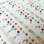 Fesjoy Autocollants pour notes de piano Piano Clavier Autocollants Amovible Transparent pour 37/49/61/88 Clavier Claviers pour Enfants Débutants Piano Pratique