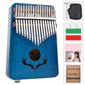 YZSL Kalimba Thumb Piano 17 Touches, Portable Mbira Sanza Acajou Finger Piano, intégré et ramassage Protection Box, Tuning Marteau, Cadeau pour Les Enfants Adultes débutants Professionnel,Bleu