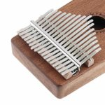 Chentaomayan Mini clavier portable professionnel 17 touches Kalimba avec marteau de réglage