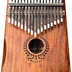 Piano à pouce 17 touches, micro à ceinture en bois de haute qualité et autres accessoires micro électrique à câble adapté aux débutants et aux experts