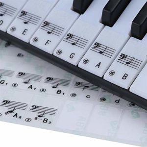 CHENTAOMAYAN 2 pcs Piano Transparent Keyboard Sticker 49 61 Touche Clavier électronique 88 Clavier de Piano Stave Note Sticker for White Keys