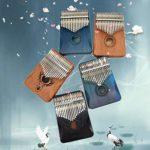 TANGT Piano pour pouce 17 touches avec outil de réglage et sac de transport (blé noir acajou et sac de rangement Molin)